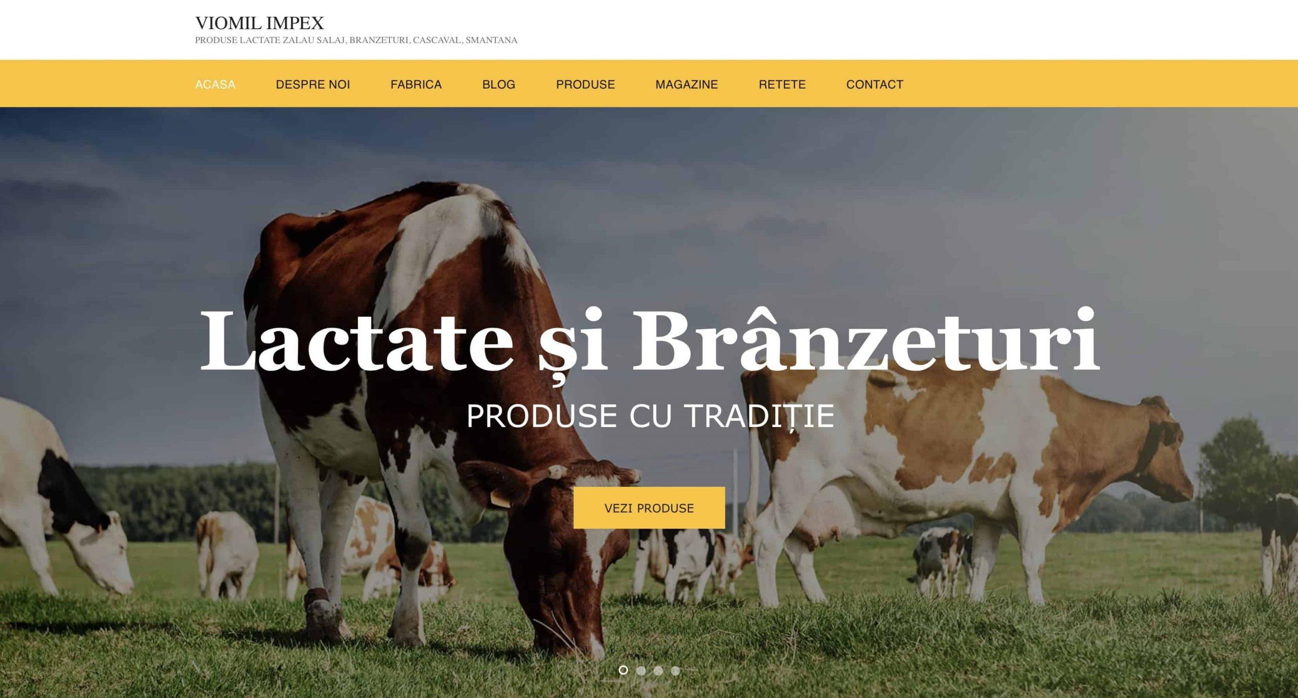 CleanPC Zalau Viomil-scaled Web Design